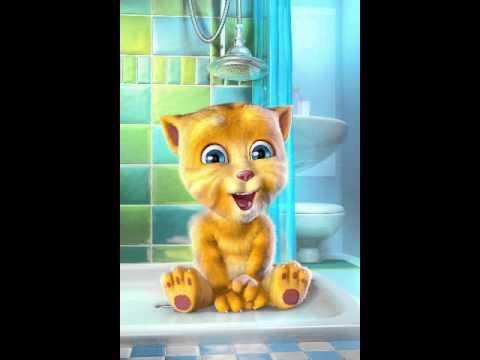 Talking Ginger2 часть nyan kat