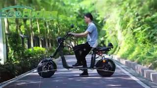 EEC Approved New 1500W, 20Ah 60V Electric Scooter Citycoco Factory Supply