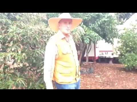 Interview and Farm Tour with Barry Koral: Tropical Fruit Farmer and Artist Extraordinaire
