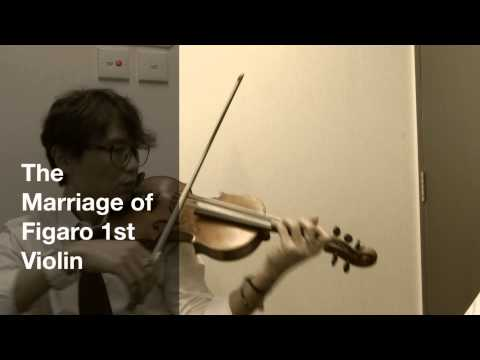 The Marriage of Figaro 1st Violin