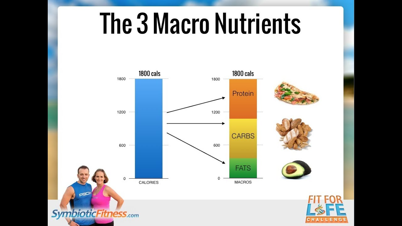 Macros: How to shred body fat and maintain muscle