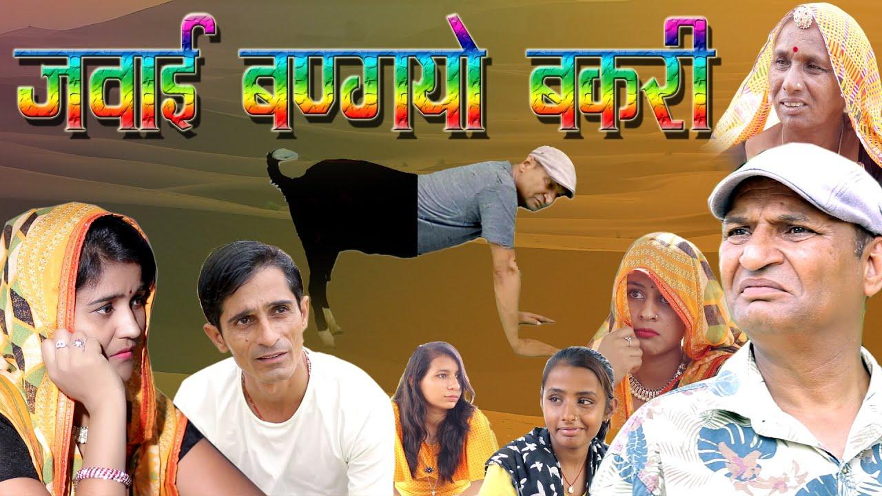 जवाई बणग्यो   बकरी ( राजस्थानी कॉमेडी विडियो)   murari Lal  Murari Ki Kocktail