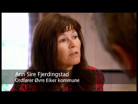 Trepartskommunen Øvre Eiker - hvordan har de lyktes?