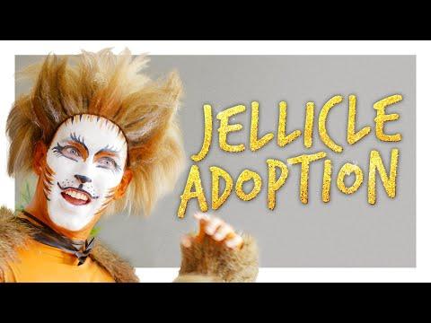 Adopting a Jellicle Cat
