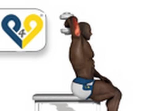 Extensão tríceps com haltere