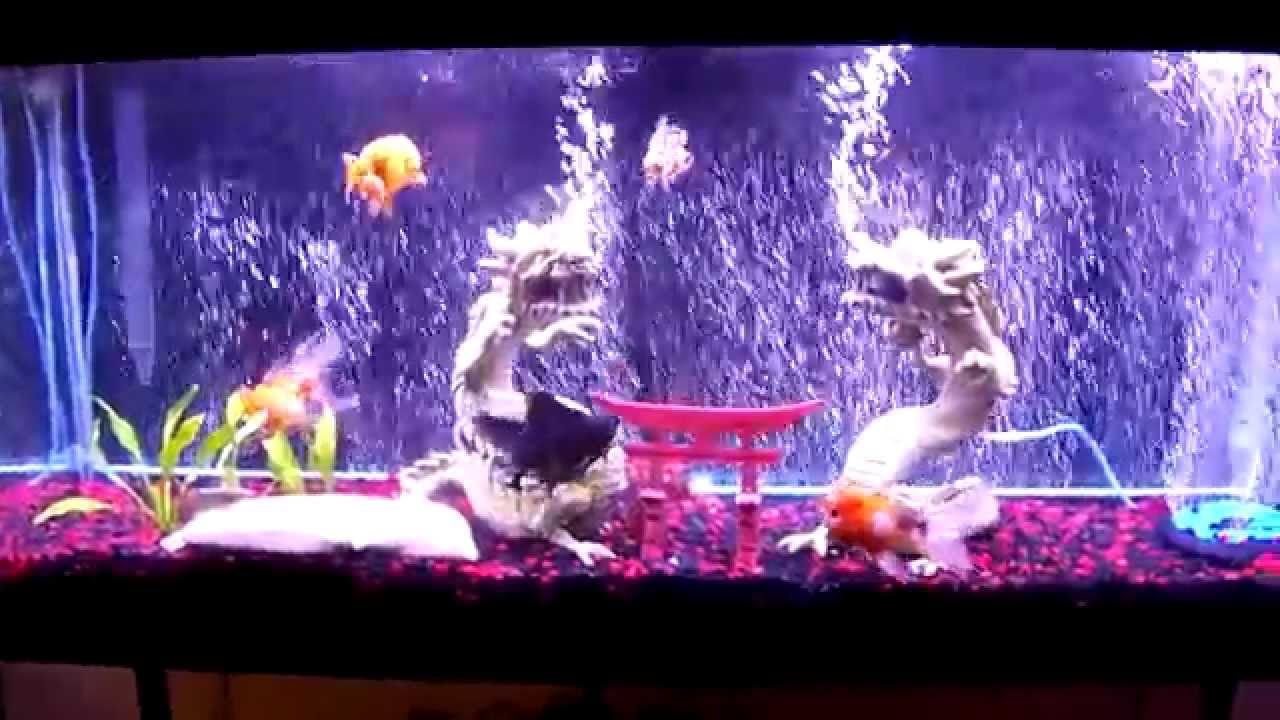 Dragon fish tank ornament - 55 Gallon Double Dragon Aquarium