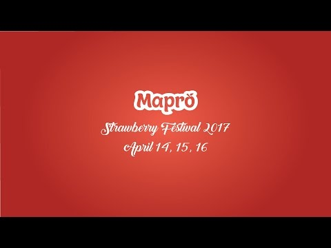 Mapro Strawberry Festival 2017