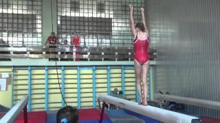 Возрождение спортивной гимнастики в республике 05 06 2015