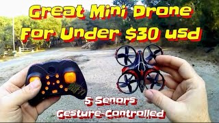 Taaiw T2G | Mini Drone Gesture Controlled