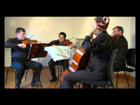 Endellion Beethoven Op 59/2 (Rasoumovsky) Second movement