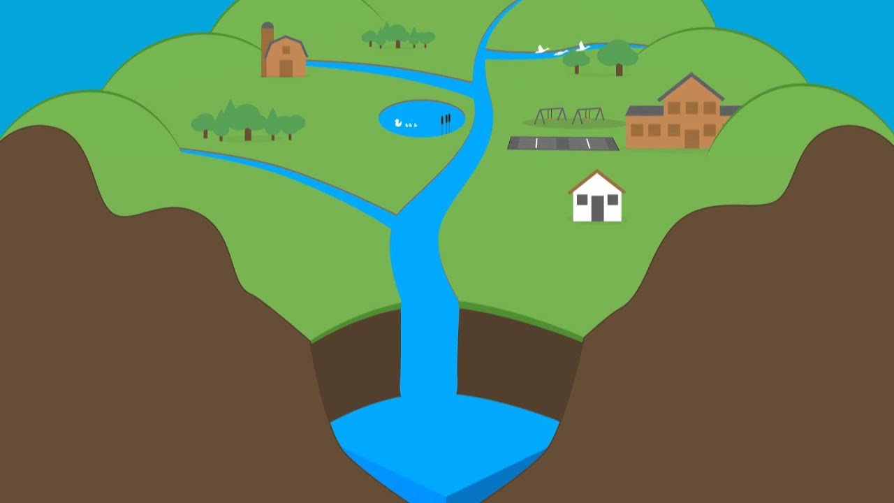 how does human activity in watersheds