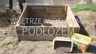 Jak zbudować inspekt ogrodowy