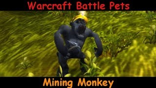 Mining Monkey -  Beats on chest and scratches - battle pet - WoW World of Warcraft