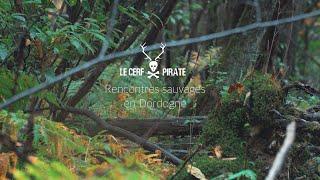 Le Cerf Pirate -  Rencontres sauvages en Dordogne #2