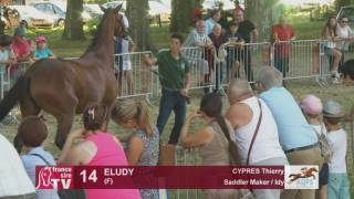 Decize 2016 : Lot 14 - Eludy