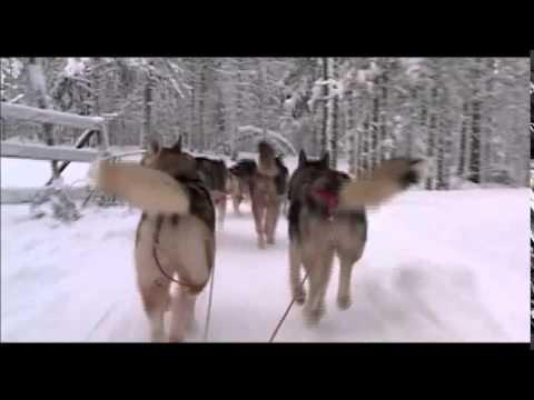 Sleigh Ride - Instrumental