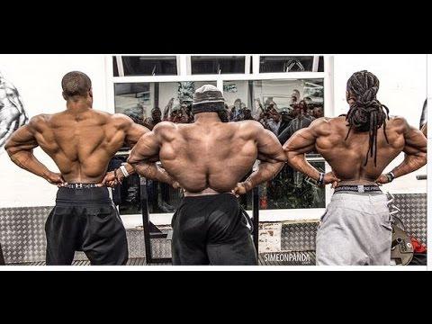gyno steroids
