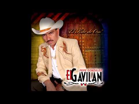 Pepe González El Gavilan - Amor en Peñamiller