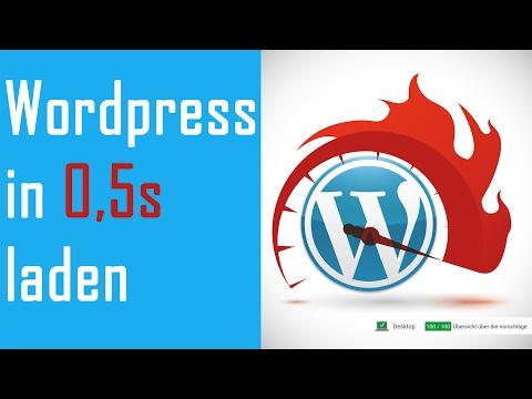 Wordpress Seite 100 Punkte Pagespeed / 0,5 Sekunden