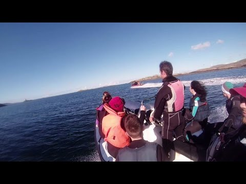 2014 Irish Scuba Diving Intervarisities - Dive on the Julia T [HD]
