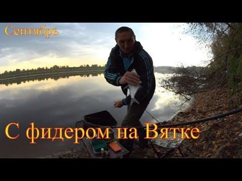 С фидером на Вятке. Рыбалка в Кирово- Чепецке.
