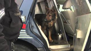 Career Connection Episode 5 - Wrp Canine Unit