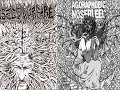 "watch he video of Insect Warfare / Agoraphobic Nosebleed 5"" split FULL EP (2008 - Grindcore)"