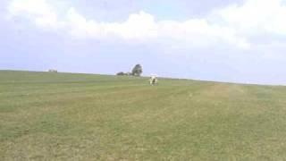 Pietenpol Aircamper