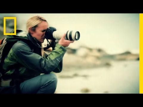 The National Geographic Society: Let's explore! | National Geographic