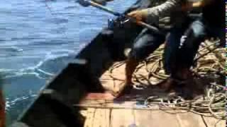 mancing pulau pandang