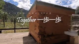 Together 一歩一歩