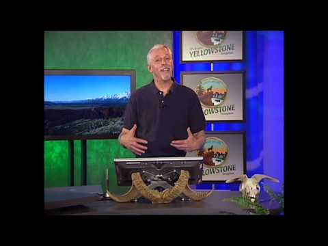 Circle of Life: The Greater Yellowstone Ecosystem - Palomar College