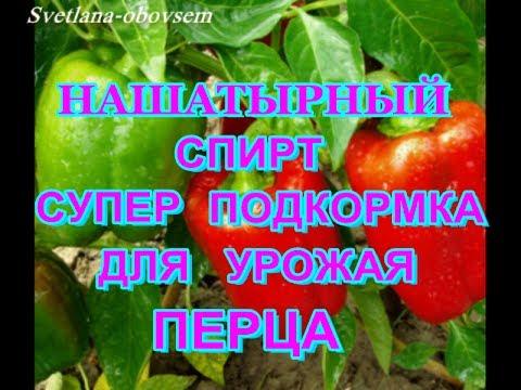 НАШАТЫРНЫЙ СПИРТ СУПЕР ПОДКОРМКА- для урожая перца и от вредителей...SUPER LINK-for pepper crop