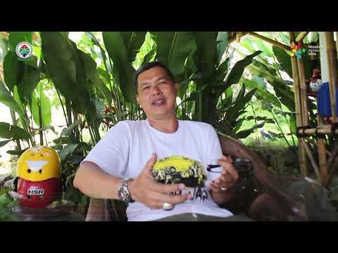 Wisata Alam Tematik Dan Rafting Crv Cirangkong River Village Desa Cemplang Kecamatan Cibungbulang Youtube