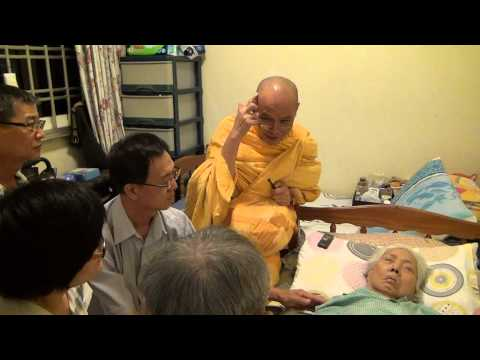 No Desire Love BUT Dhamma Brother