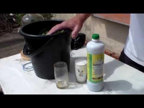 Безалкогольный мохито рецепты в домашних условиях