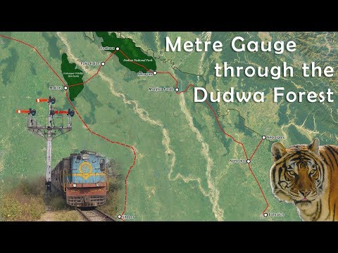 Metre gauge train journey through the Dudwa tiger forest