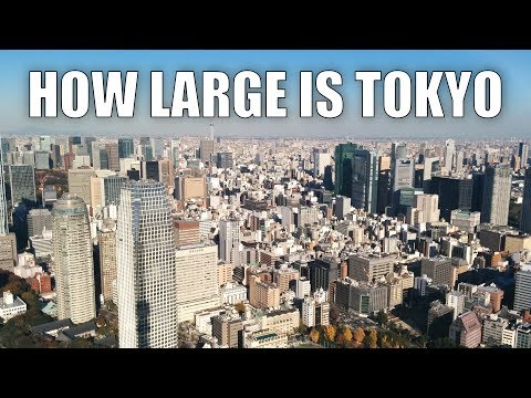 How large is Tokyo? | Biggest city in the world