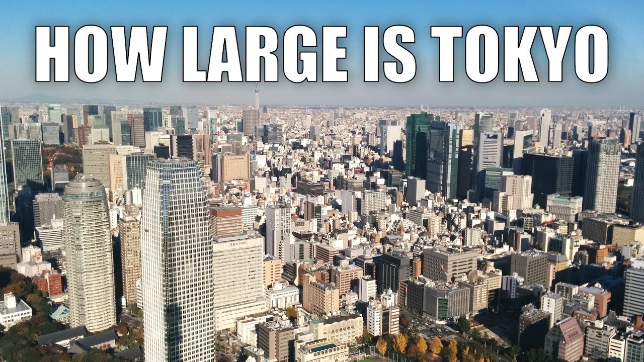 What is the biggest city in the world