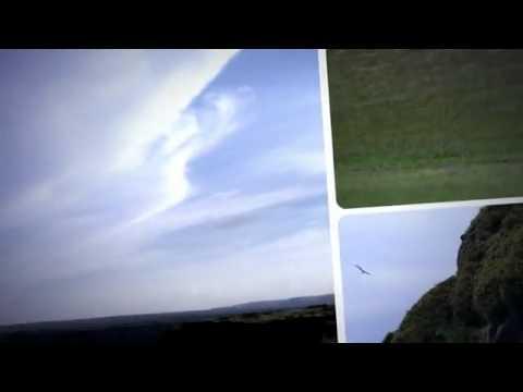 Biofuels  Renewable Jet Fuel   YouTube