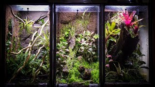 how to build a vivarium with a waterfall
