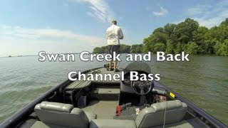 Swan Creek and Back Channel Bass - Upper Chesapeake Bay