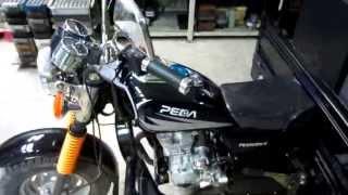 Внешний обзор грузового мотоцикла  PEDA PE200ZH-E