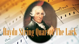 ❤ Haydn String Quartet The Lark ❤ Classical Music for Relaxation - Haydn Best Classical Music