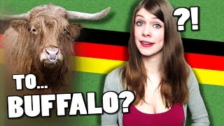 german verbs that are also animals