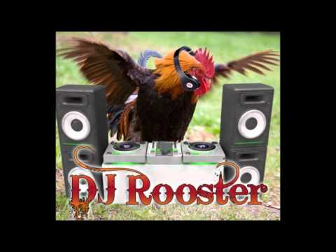 Dj Rooster