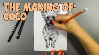 Yorkshire Terrier Speed Drawing