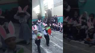 Funny Bunny Carrot Race of SCHOOL Kids ! The Horizon School