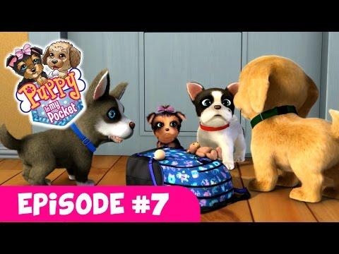 Puppy In My Pocket - Webisode #7
