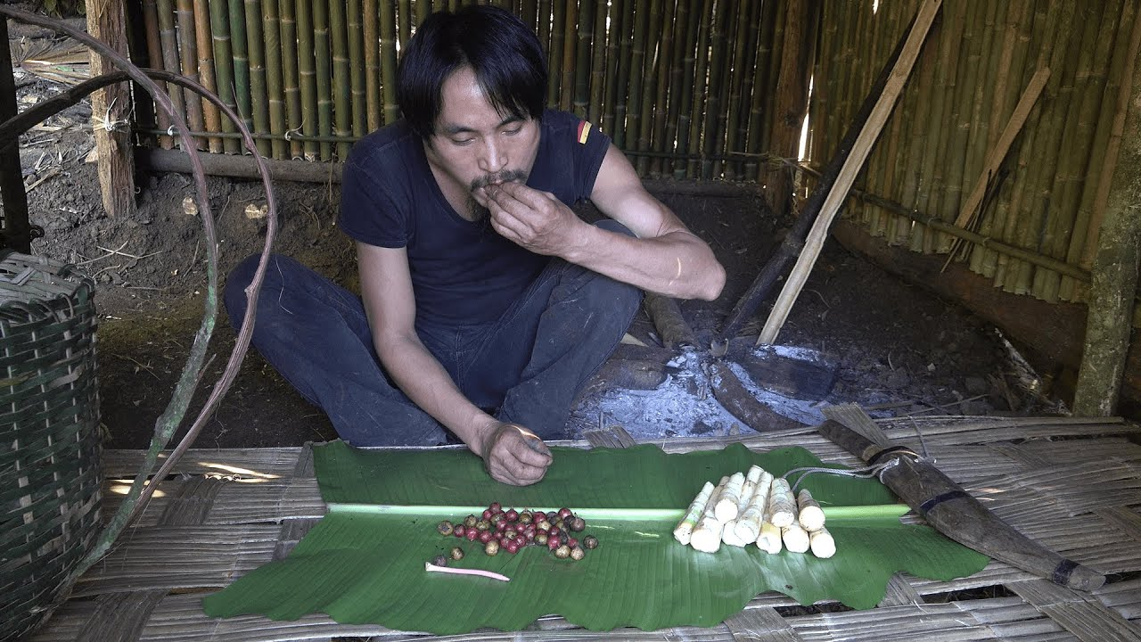 Bamboo Shoots and Forest Fruits, Wilderness Alone, Episode 48